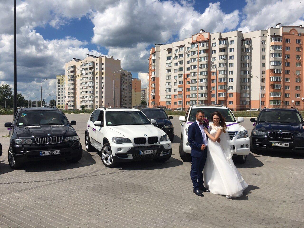 Винница фото на свадьбу